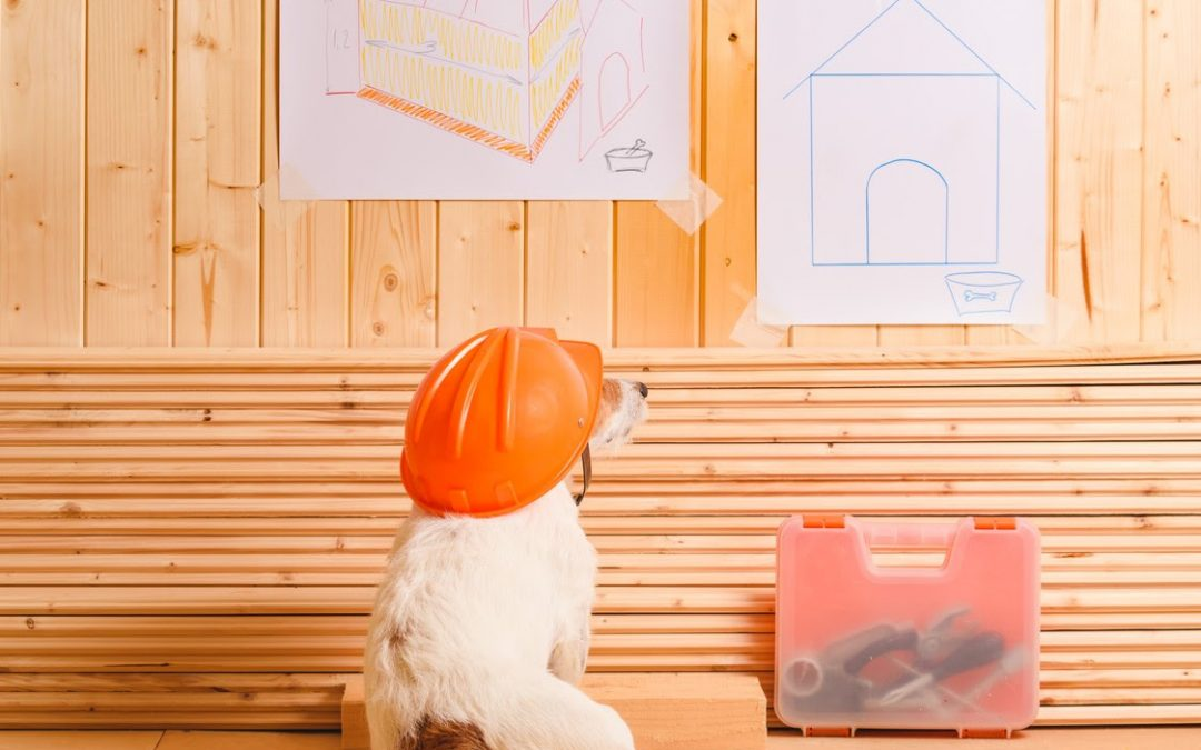 Building a Home for Your Pampered Pet