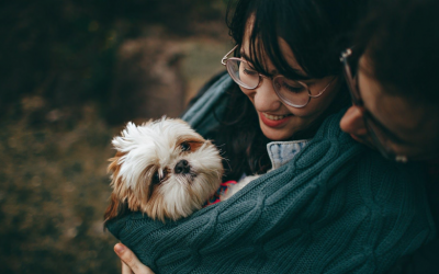 Adopting a Pet? Here's How You Can Be a Great Owner During and After the Pandemic